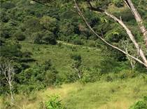 Lots and Land for Sale in Playa Potrero, Guanacaste $89,900