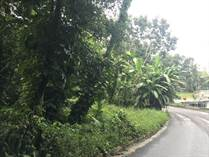 Lots and Land for Sale in Caín Bajo, SAN GERMAN, Puerto Rico $45,000