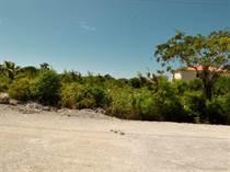 Lots and Land for Sale in El Ejecutivo, Bavaro, La Altagracia $32,000