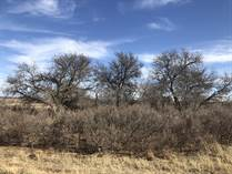 Recreational Land for Sale in Childress County, Childress, Texas $384,000