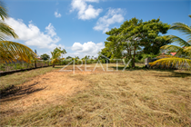 Lots and Land for Sale in Belize City, Belize $400,000