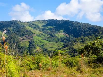 Costa Rica, Puntarenas, Perez Zeledon