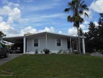 Homes for Sale in Brookridge, Brooksville, Florida $89,705
