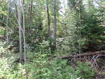 Lots and Land Sold in Lion's Head, Northern Bruce Peninsula, Ontario $42,000
