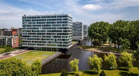 Jan van Zutphenstraat, Suite P2#280699365