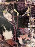 Lots and Land for Sale in Tiplersville, FALKNER, Mississippi $62,500