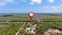 Lots and Land for Sale in Tulum, Quintana Roo $325,000
