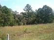 Lots and Land for Sale in Dittmer, Missouri $21,555