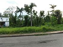 Homes for Sale in Bo. Rocha, Moca, Puerto Rico $25,000