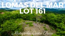 Lots and Land for Sale in Matapalo Beach , Guanacaste $57,940