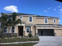 Homes for Sale in Polk City, Davenport, Florida $795,000