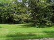 Homes for Sale in Catalina Cove , Brasilito, Guanacaste $149,000