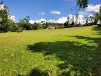 Lots and Land for Sale in Bo. Quebradilla, Barranquitas, Puerto Rico $1,250,000