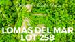Lots and Land for Sale in Matapalo Beach , Guanacaste $53,680