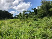 Lots and Land for Sale in Bo. Cocos, Quebradillas, Puerto Rico $16,000