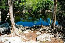 Condos for Sale in holistika, Tulum, Quintana Roo $139,900