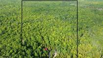 Recreational Land for Sale in Purple Valley, Ontario $699,000