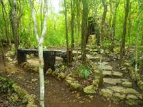 Lots and Land for Sale in North, Playa Del Carmen, Quintana Roo $295,000