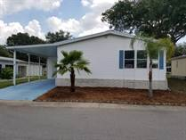 Homes for Sale in Hacienda Heights, Riverview, Florida $69,900