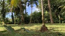 Lots and Land for Sale in Uvita, Puntarenas $98,000