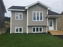 Homes for Sale in Newfoundland, St. John's, Newfoundland and Labrador $279,900