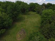 Lots and Land for Sale in Independence, Minnesota $230,000