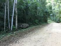 Lots and Land for Sale in Benque Viejo Town, Cayo $23,500