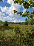 Lots and Land for Sale in White Lake, Lanark Highlands, Ontario $249,900