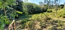 Lots and Land for Sale in Bo. Naranjo, Moca, Puerto Rico $48,000