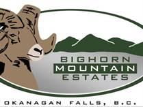 Lots and Land for Sale in Okanagan Falls, British Columbia $159,900