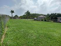 Homes for Sale in Arenales Bajos, Isabela, Puerto Rico $45,000
