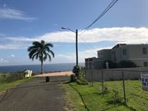 Lots and Land for Sale in Bo. Guayabo, Isabela, Puerto Rico $125,000