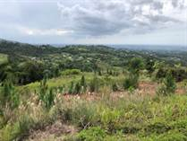 Lots and Land for Sale in Guzman Abajo, Rio Grande, Puerto Rico $80,000