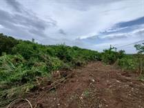 Lots and Land for Sale in Bo. Guerrero, Aguadilla, Puerto Rico $93,000