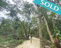 Lots and Land for Sale in Ruta de los Cenotes, Puerto Morelos, Quintana Roo $15,800