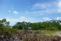 Lots and Land for Sale in Village, Caye Caulker, Belize $155,000
