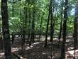 Lots and Land for Sale in Harbor South Lots, Mount Ida, Arkansas $87,500
