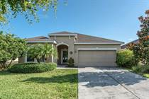 Homes for Sale in Bahia Lakes, Ruskin, Florida $187,900
