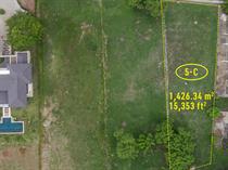Homes for Sale in Tamarindo, Guanacaste $199,000