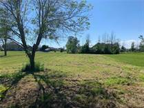 Lots and Land for Sale in Haldimand County, Lowbanks, Ontario $189,900
