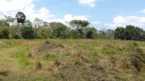 Lots and Land for Sale in Pozas, San Sebastian, Puerto Rico $20,000