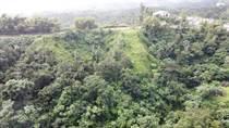 Lots and Land for Sale in Montones III, Las Piedras, Puerto Rico $35,000