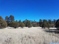 Lots and Land for Sale in New Mexico, Mimbres, New Mexico $47,500