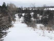 Lots and Land for Sale in Wellman, Ontario $339,900