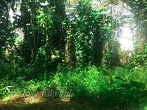 Lots and Land for Sale in Pahoa, Hawaii $8,000