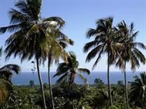 Lots and Land for Sale in Cabrera, Maria Trinidad Sanchez $246,000