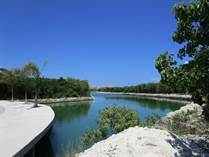 Lots and Land for Sale in Puerto Aventuras, Quintana Roo $786,000