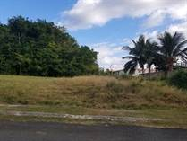 Lots and Land for Sale in Bo. Calvache, Puerto Rico $96,000