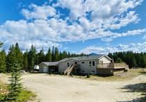 Homes for Sale in Valemount, British Columbia $795,000