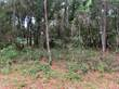 Lots and Land for Sale in Inverness Highlands West, Inverness, Florida $8,900